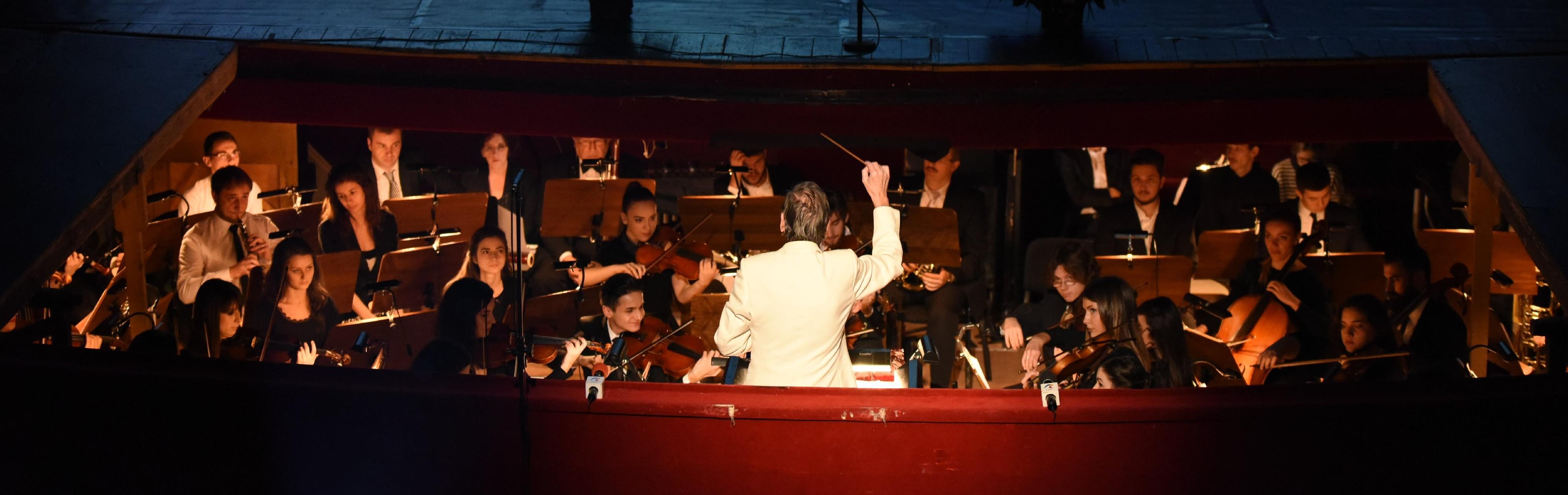 Banner-muzica-orchestra-1