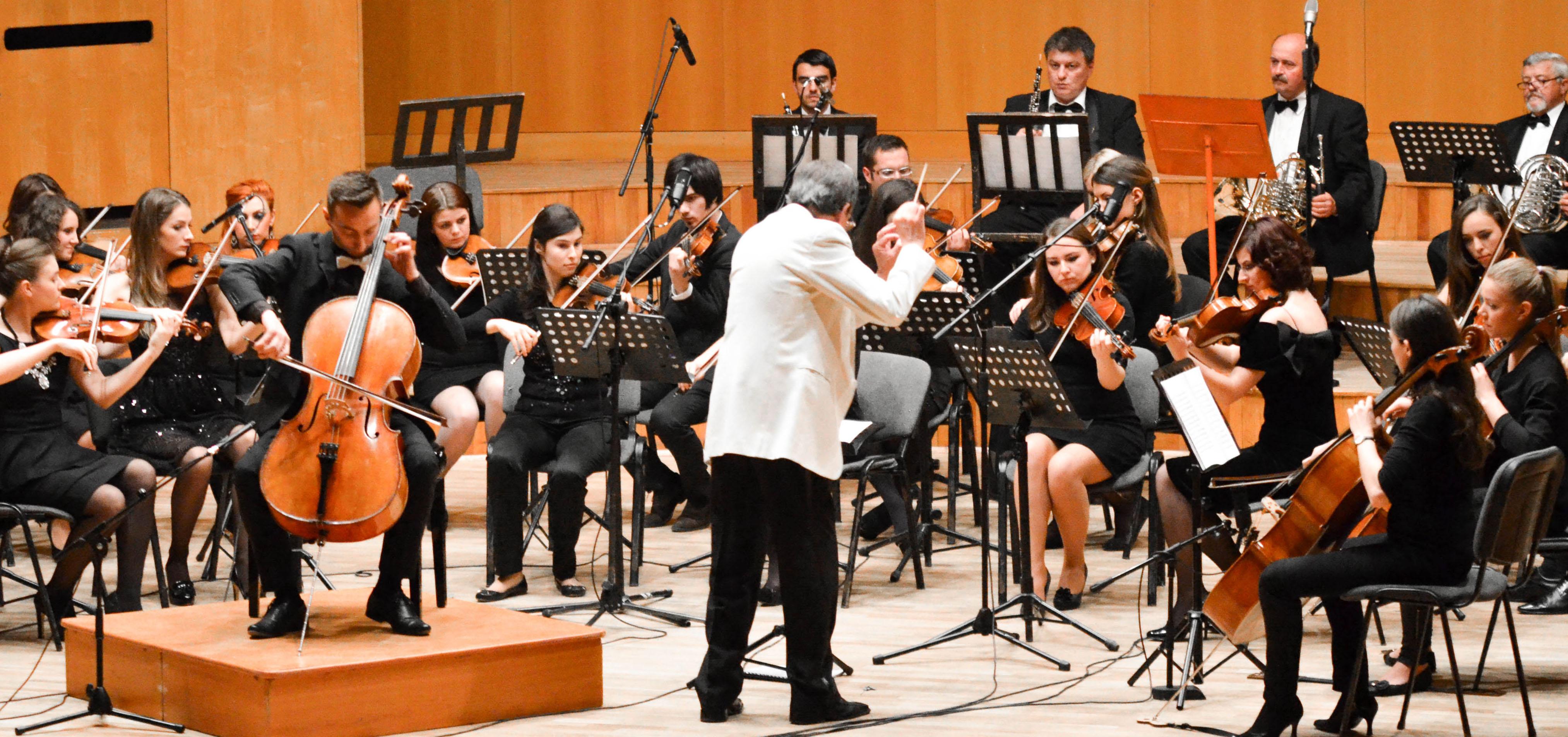 Banner-muzica-violoncel-1